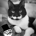 Feel Like a Sir!