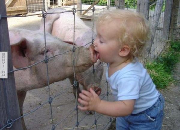 Baby-kissing-pig
