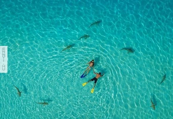 Moorea_French_Polynesia