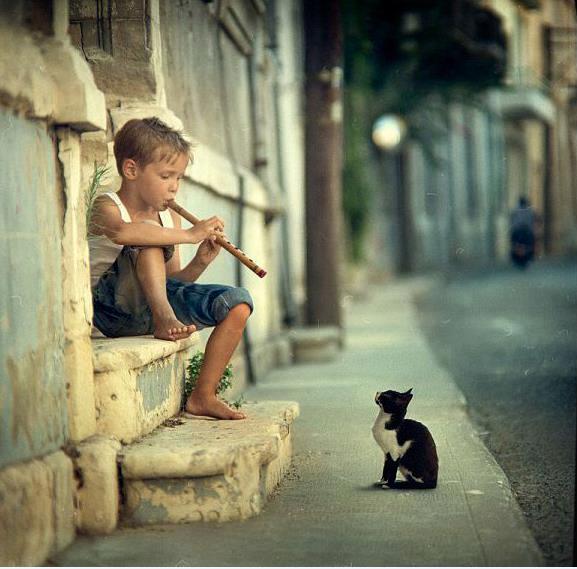 a zene összehoz mindenkit