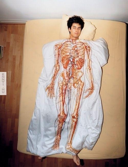 anatomiai takaro