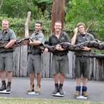 Az Ausztrálok megfogták a Pitont