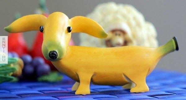 banana-puppy