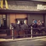 Mekibe lóval :)