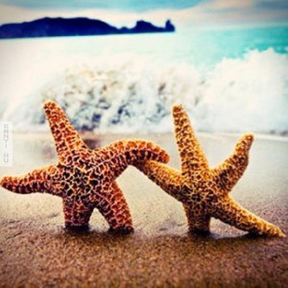 csillagok_csillagok