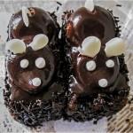 Csoki egerek