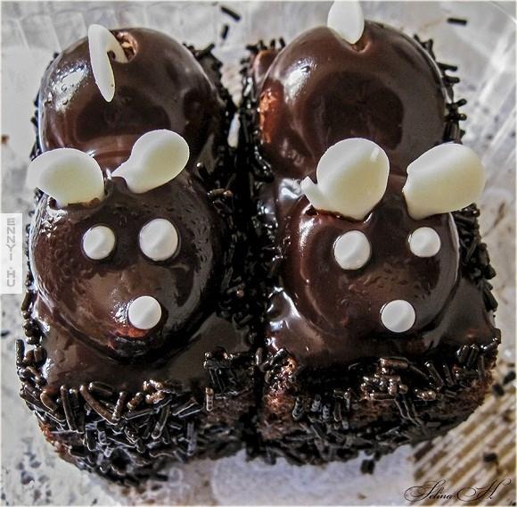 csoki_egerek