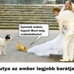 Házasságos kutya