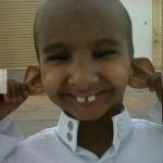 Kis füles-fogas