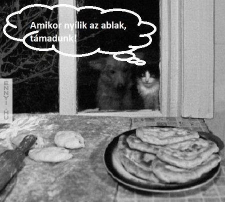 ha_nyilik_az_ablak