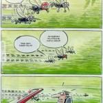 Bukósisakos szúnyog