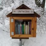 Ingyen könyv lelőhely az erdőben