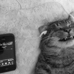 Jó a zene