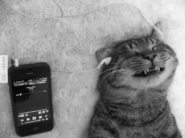 jo a zene