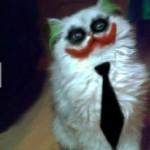 Joker macs