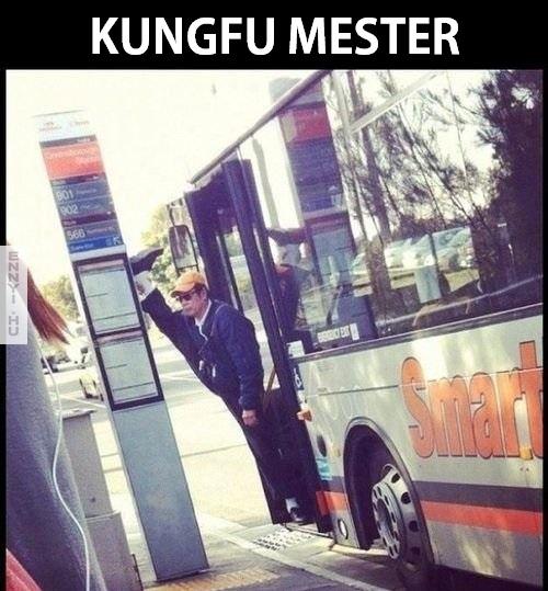 kungfumester