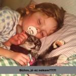 Macskaálom :)