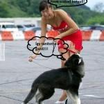 Nem praktikus viselet kutyasétáltatáshoz