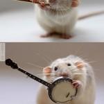 Kisegér, kis hangszerekkel