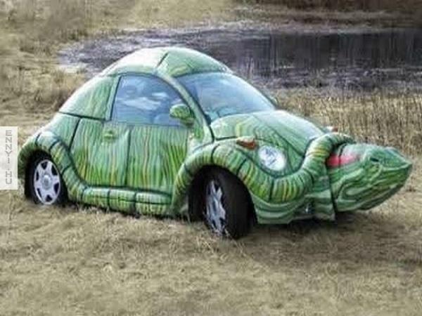 turtle-car