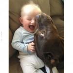 A kutya mindenkire jó hatással van