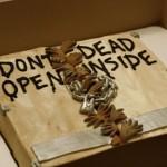 The Walking Dead torta, falnád?